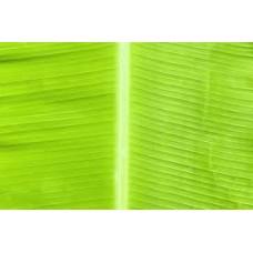 Banana Leaf Produce of  Philippinese